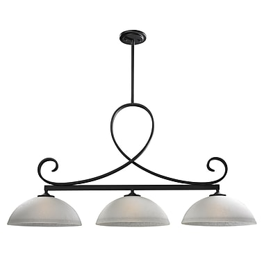 Z-Lite Arshe (603-3) 3 Light Chandelier, 45.25