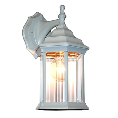 Z-Lite Waterdown (T21WH) 1 Light Outdoor Wall Light, 7.5