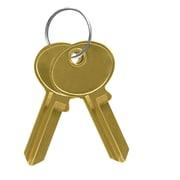 Salsbury Industries Blank Keys for Standard Locks of Cell Phone Storage Lockers
