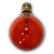 String Light Co Incandescent Light Bulb (Set of 25); Amber