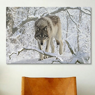 iCanvas 'Zoo Wolf 03' by Gordon Semmens Photographic Print on Canvas; 18'' H x 26'' W x 1.5'' D