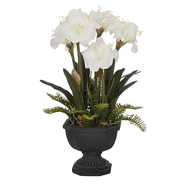 House of Silk Flowers Artificial Amaryllis in Urn