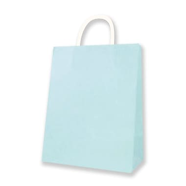Medium Kraft Bag, Light Blue, 12 Bags