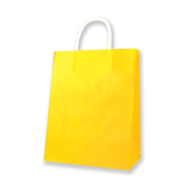 Medium Kraft Bag, Yellow, 12/Pack