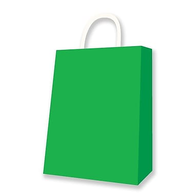 Medium Kraft Bag, Kiwi, 12 Bags