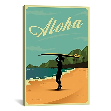 iCanvas American Flat Aloha Graphic Art on Wrapped Canvas; 40'' H x 26'' W x 0.75'' D