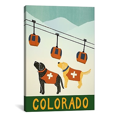 iCanvas Colorado Ski Patrol Canvas Art; 18'' H x 12'' W x 0.75'' D