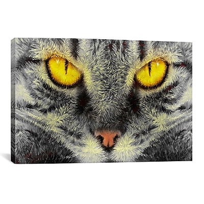 iCanvas Gato Loco by Maximilian San Graphic Art on Wrapped Canvas; 12'' H x 18'' W x 0.75'' D