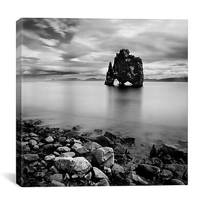 iCanvas Iceland Dinosaur by Nina Papiorek Photographic Print on Wrapped Canvas