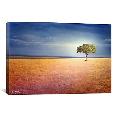 iCanvas ''Spirit Of the Earth'' by Ben Heine Painting Print on Canvas; 12'' H x 18'' W x 0.75'' D