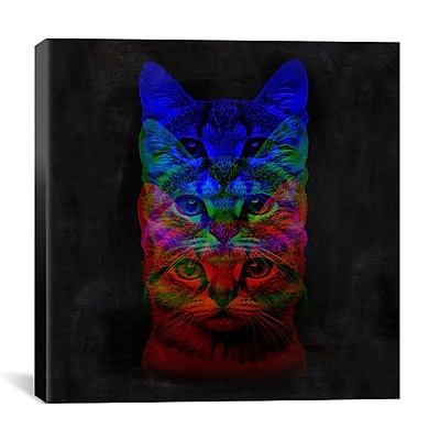 iCanvas Hipster Cat #2 Print by Maximilian San Graphic Art on Wrapped Canvas