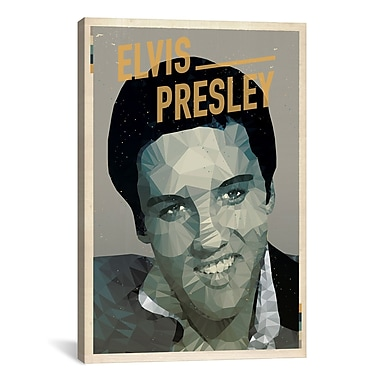 iCanvas American Flat Elvis Graphic Art on Wrapped Canvas; 26'' H x 18'' W x 0.75'' D