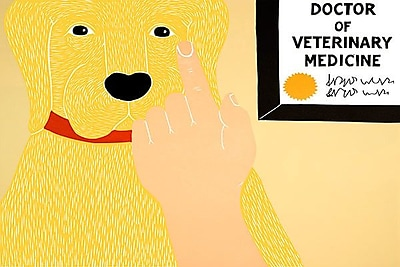 iCanvas Listen to Your Vet by Stephen Huneck Painting Print on Wrapped Canvas