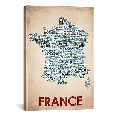 iCanvas American Flat France Graphic Art on Wrapped Canvas; 61'' H x 41'' W x 1.5'' D