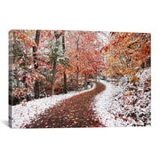 iCanvas 'Two Seasons' by Ben Heine Photographic Print on Wrapped Canvas; 12'' H x 18'' W x 0.75'' D