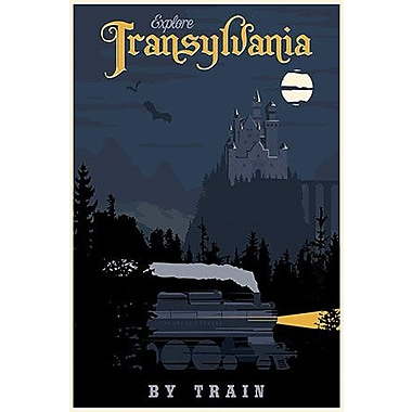 iCanvas Transylvania Travel by Steve Thomas Graphic Art on Wrapped Canvas; 61'' H x 41'' W x 1.5'' D