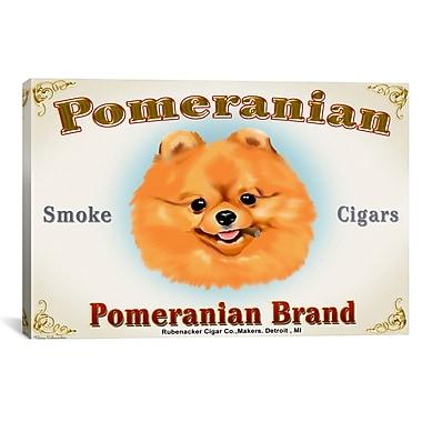 iCanvas Brian Rubenacker Pom Cigar Graphic Art on Wrapped Canvas; 26'' H x 40'' W x 0.75'' D