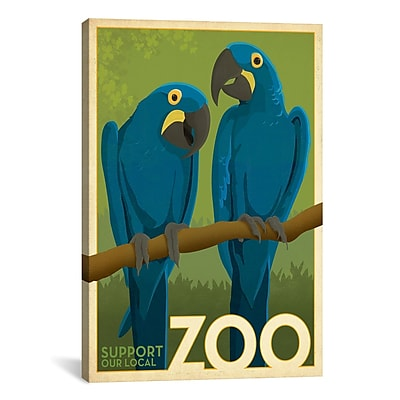 iCanvas VAF Zoo Parrots by Anderson Design Group Graphic Art on Wrapped Canvas