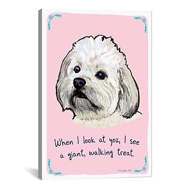 iCanvas Hungry Hungry Havanese Canvas Print Wall Art; 40'' H x 26'' W x 0.75'' D