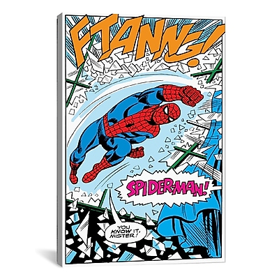 iCanvas Marvel Comics Spider-Man Panel B Graphic Art on Wrapped Canvas; 18'' H x 12'' W x 0.75'' D