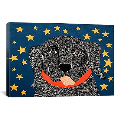iCanvas I See Stars by Stephen Huneck Painting Print on Wrapped Canvas; 26'' H x 26'' W x 0.75'' D