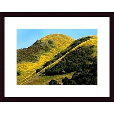 Printfinders Mustard Hillside by John K. Nakata Framed Photographic Print; Black
