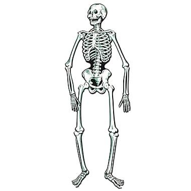 Squelette articulé, 4,7 pi, paq./3