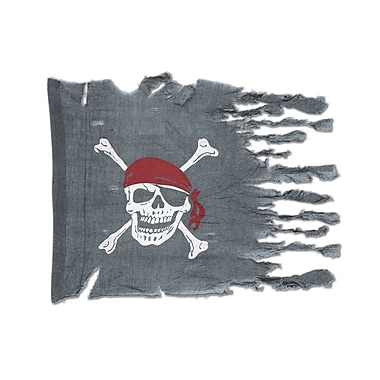 Weathered Pirate Flag, 29
