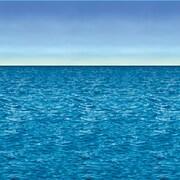Ocean & Sky Backdrop, 4' x 30'