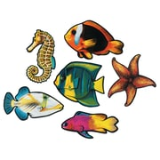 """Beistle 15"""" Fish Cutouts, 12/Pack"""