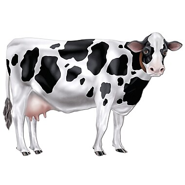 Jointed Cow, 34-1/2