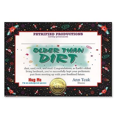 Beistle Older Than Dirt Certificate, 5