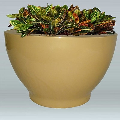 Allied Molded Products Plastic Pot Planter; Black