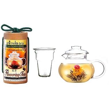 Primula® PTA-4002 40 oz. Flowering Teapot Gift Set, Clear