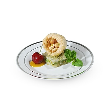 Silver Splendor Plastic Plate with Silver Bands 6