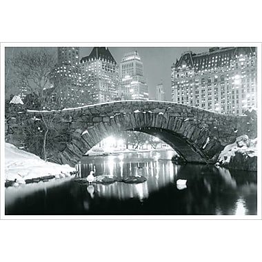 New York - Winter Central Park, Stretched Canvas, 24