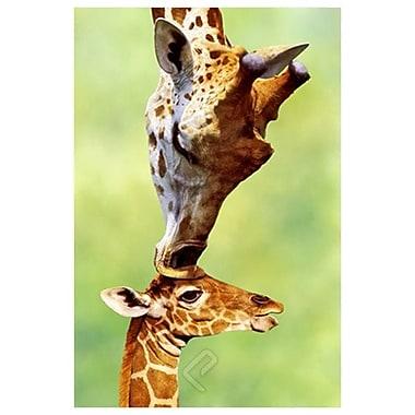 Giraffe Mom, Stretched Canvas, 24
