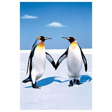 Amour de pingouins, toile tendue, 24 x 36 po