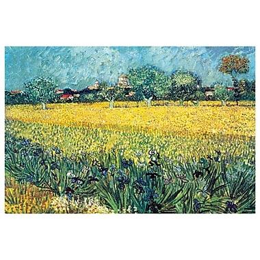 View of Arles Irises by Van Gogh, Canvas, 24