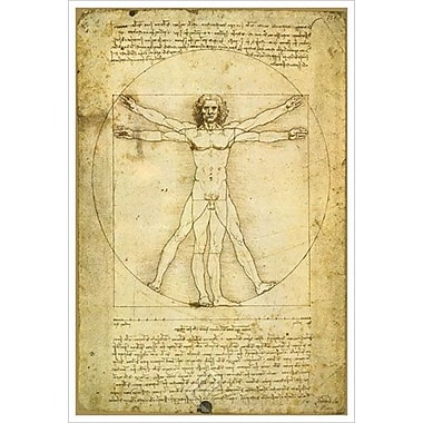 Vitruvius Man by Da Vinci I, Canvas, 24