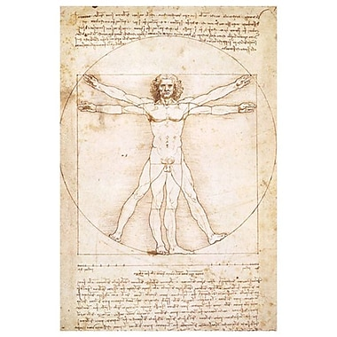 Vitruvius Man by Da Vinci II, Canvas, 24