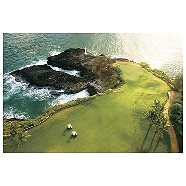 Golf Course Hawaii Coast, Stretched Canvas, 24