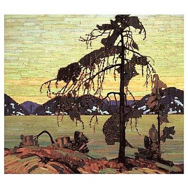 Le pin de Thomson, toile, 24 x 36 po