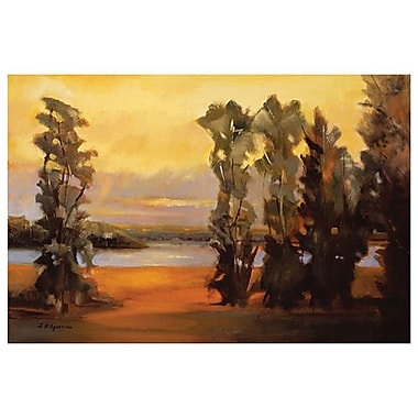 Rio Grande River I by D'Agostino, Canvas, 24