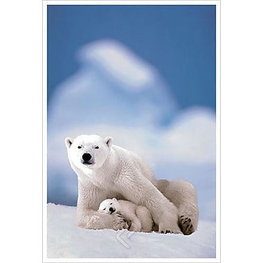 Polar Bear and Baby, Stretched Canvas, 24