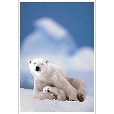 Ours polaire et ourson, toile tendue, 24 x 36 po
