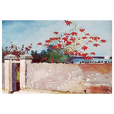 A Wall, Nassau de Homer, toile, 24 x 36 po