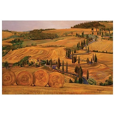 Hay Bales Tuscany by Maggio, Canvas, 24
