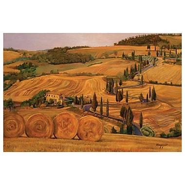 Balles de foin en Toscane de Maggio, toile, 24 x 36 po