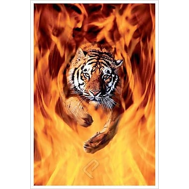 Bengal Tiger Jumping Flames, Stretched Canvas, 24